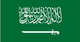 السعودية نيوكاسل